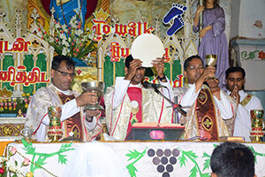 Fr Sahaya Ranjith, CSC, celebrates his First Mass